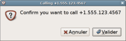 Screenshot of the dialog asking confirmation for the call